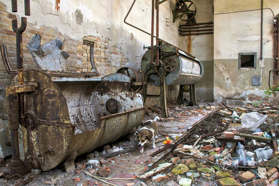The remains of the laundry of the abandoned hospital on Poveglia